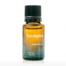 Essential Oils - Eucalyptus 15mL